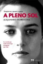 A pleno Sol (ebook)
