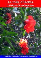 La folle d'Ischia o il fiore di melograno (ebook)