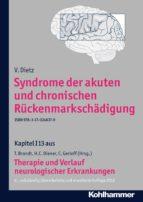 Syndrome der akuten und chronischen Rückenmarkschädigung (ebook)