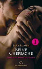 Reine Chefsache | Erotische Kurzgeschichte (ebook)