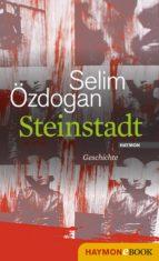 Steinstadt (ebook)