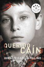 Querido Caín (ebook)