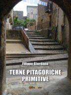 Terne pitagoriche primitive (ebook)