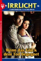 Irrlicht 22 - Gruselroman (ebook)