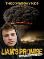 Liam's Promise (ebook)