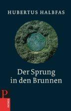Der Sprung in den Brunnen (ebook)