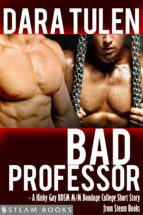 Bad Professor - A Kinky Gay BDSM M/M Bondage College Short Story from Steam Books (ebook)