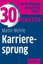 30 Minuten Karrieresprung (ebook)