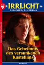 Irrlicht 39 - Gruselroman (ebook)