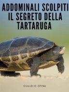 Addominali Scolpiti : Il Segreto della Tartaruga (ebook)