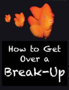 How to Get Over a Break-Up (ebook)