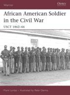 African American Soldier in the Civil War (ebook)