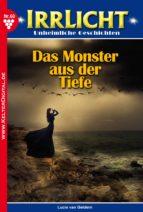 Irrlicht 60 - Gruselroman (ebook)