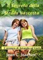 Il Segreto Della Strada Nascosta (ebook)