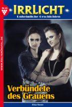 Irrlicht 45 - Gruselroman (ebook)
