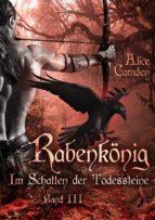 Im Schatten der Todessteine 3: Rabenkönig (ebook)