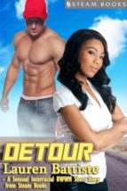 Detour - Sexy Interracial BWWM Erotic Romance Short Story from Steam Books (ebook)