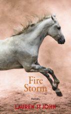 Fire Storm (ebook)