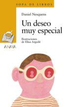 Un deseo muy especial (ebook)