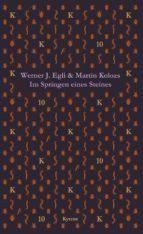 Im Springen eines Steines (ebook)