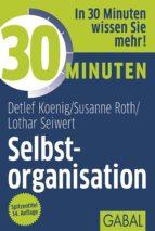30 Minuten Selbstorganisation (ebook)