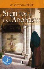 Secretos de una adopción (ebook)