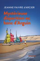 Mystérieuse disparition au banc d'Arguin (ebook)