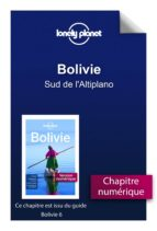 Bolivie - Sud de l'Altiplano (ebook)