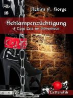Schlampenzüchtigung (ebook)