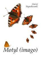 Motyl (imago) (ebook)