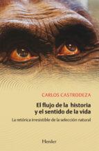 El flujo de la historia y el sentido de la vida (ebook)